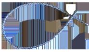 Ölschlauch, 1,2 m (KB EcoLine, HR Serie BE) blau